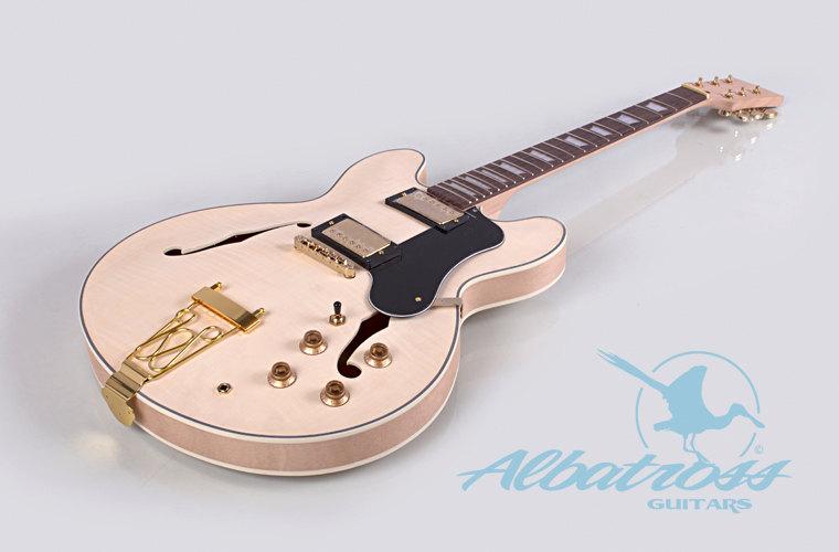 Hollow Body Guitar Clipart.
