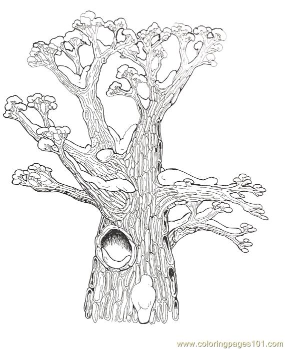 Hollow tree clipart Clipground