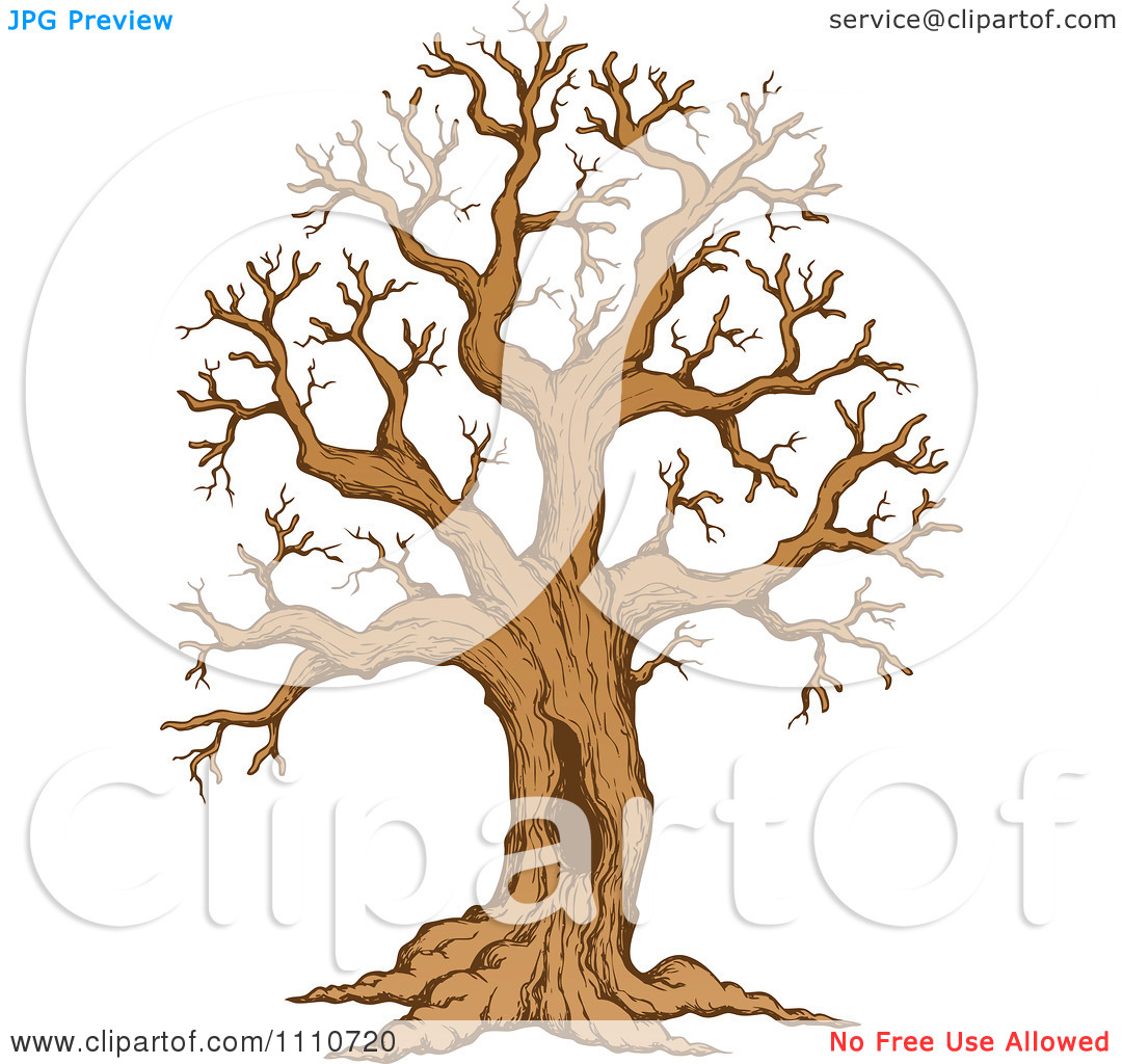 Clipart Sketched Hollow Bare Tree.