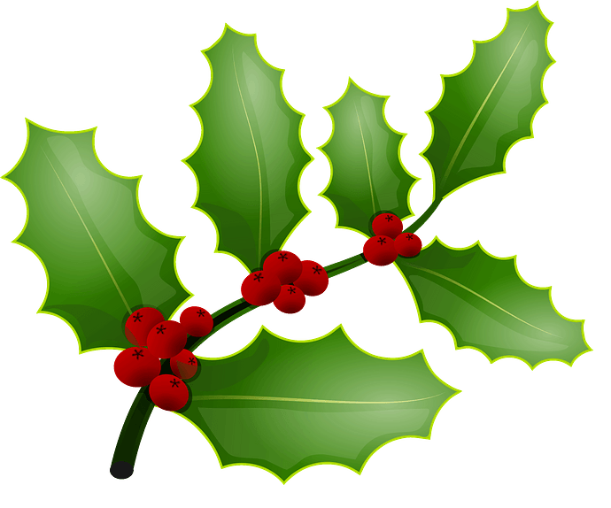 Holly berries clipart. Free download..