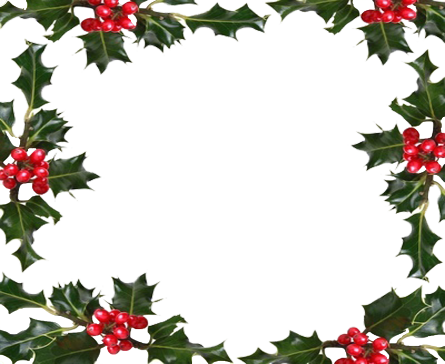 Holly,Wreath,Plant,Christmas decoration,Clip art,Flower,Picture.
