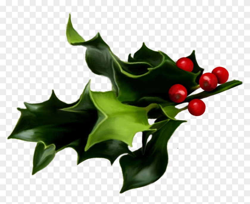 Holly And Ivy Png Pluspng.