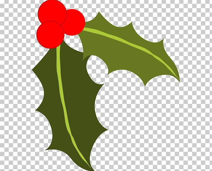 Common Holly Berry PNG, Clipart, Aquifoliaceae, Artwork, Berry, Blog.