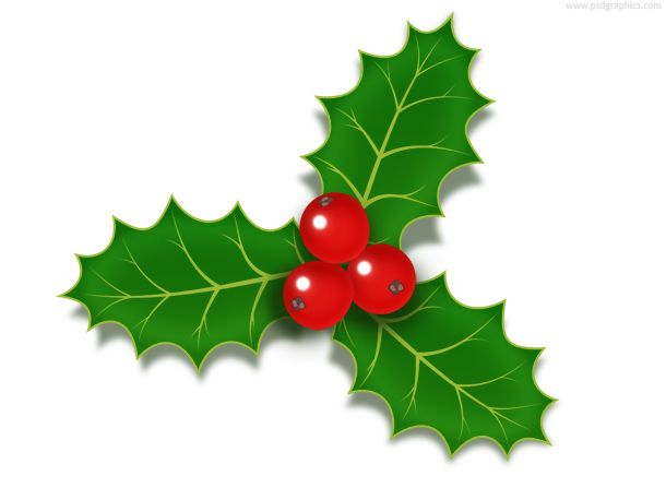 Holly berries icon.