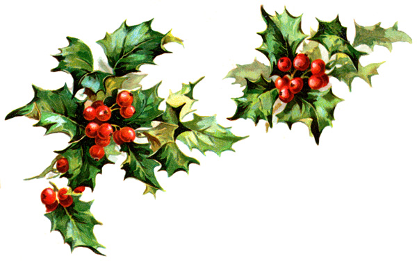 Winter Holly Clipart.