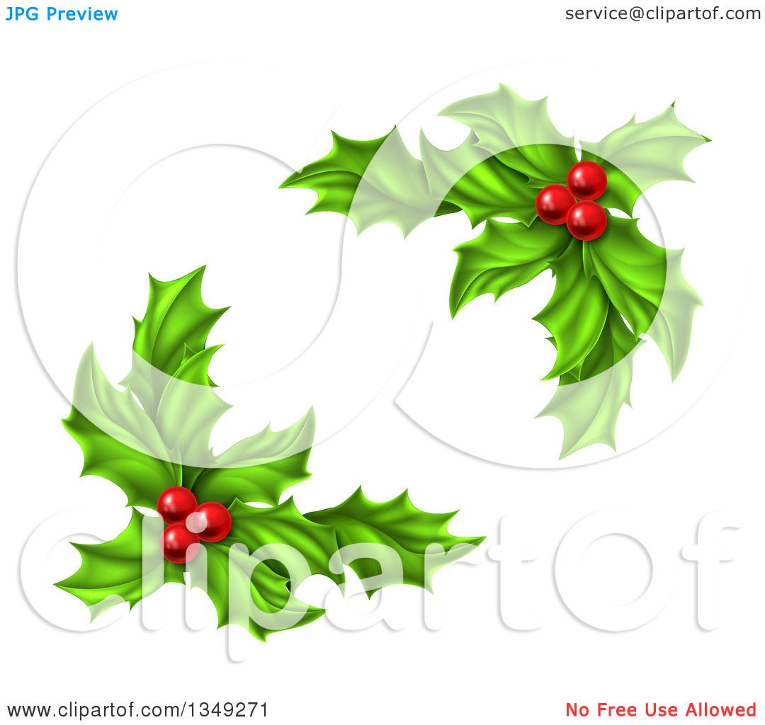 Clipart of Green Holly Leaves and Christmas Berries.