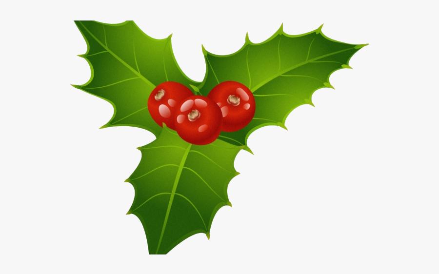 Holly Leaf Berries Clipart Christmas Mistletoe Transparent.