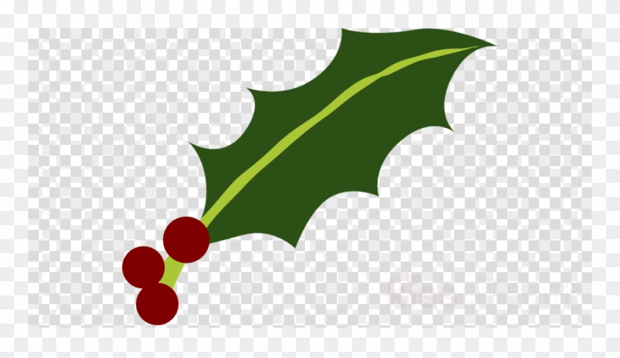 Download Holly Leaf Png Clipart Common Holly Yaupon.