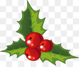 Christmas Holly PNG.