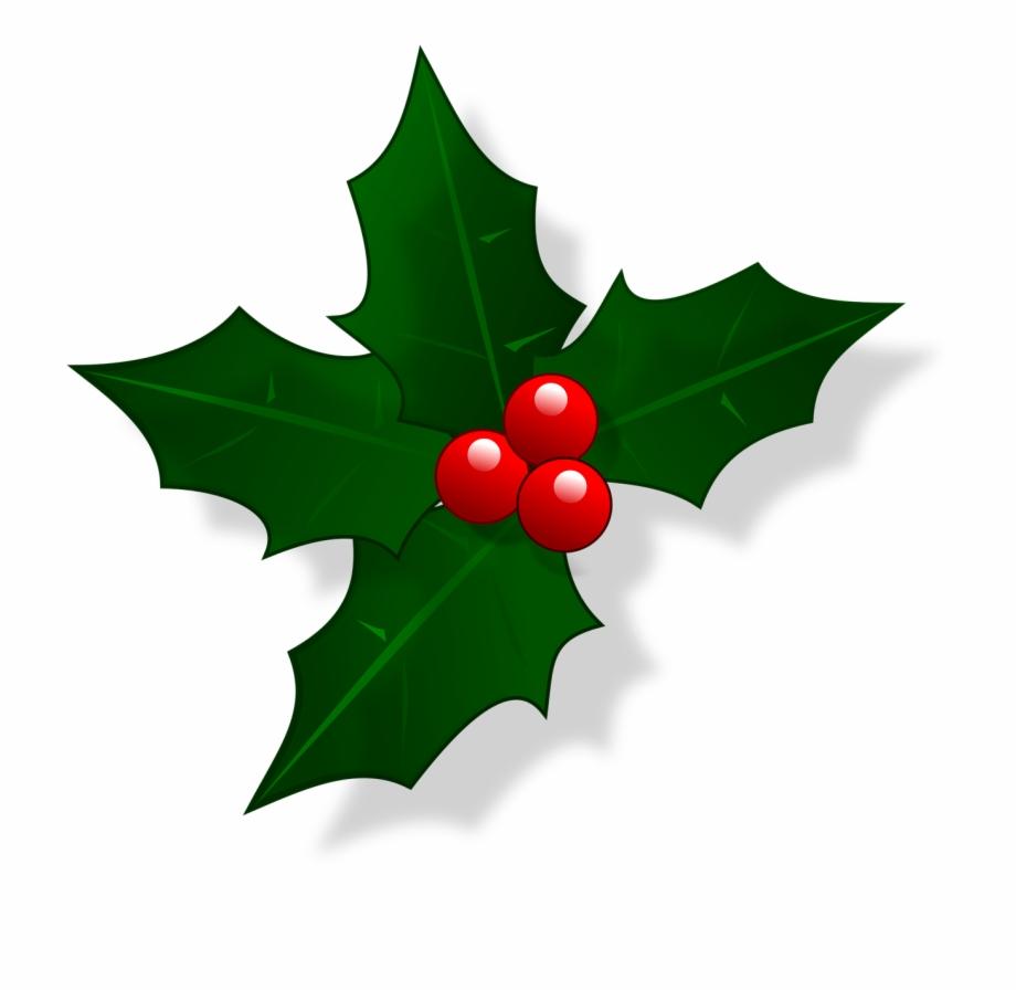 Mail Christmas Holly Xmas Png Image.