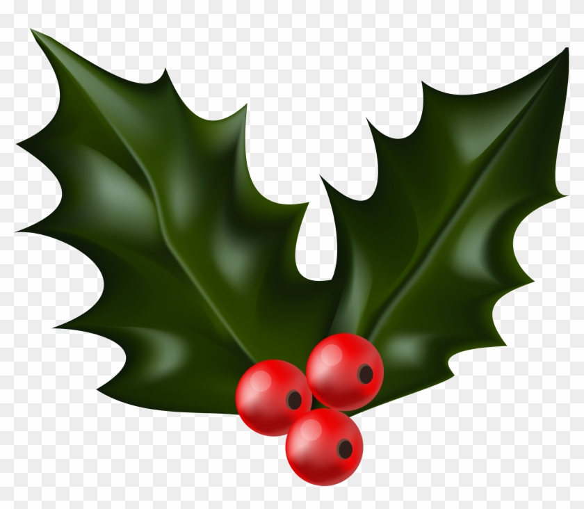 Download Free png Christmas Holly Png (91+ images in Collection.