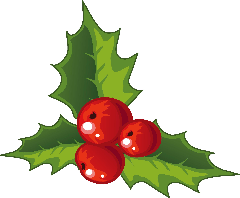 Holly Christmas decoration.