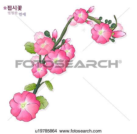 Drawings of flowers, nature, plants, hollyhock, plant, bloom.