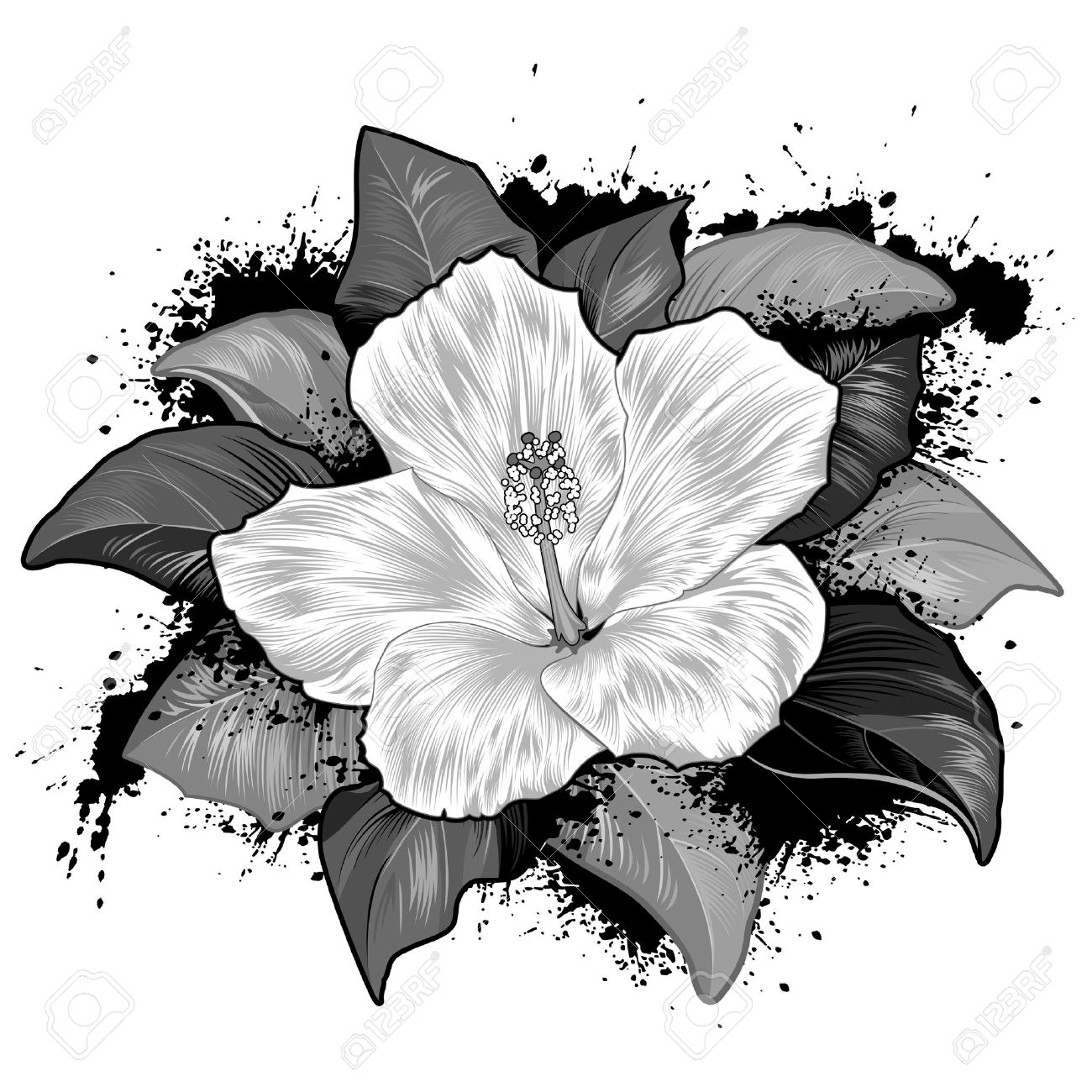 125 Hollyhock Cliparts, Stock Vector And Royalty Free Hollyhock.
