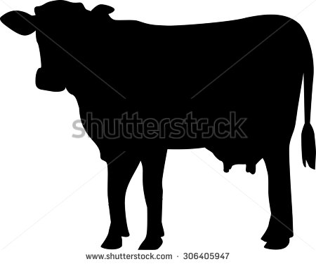 Cow Vector Stock Images, Royalty.