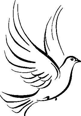 Holy Spirit Dove.