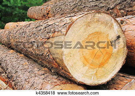 Pictures of Holzstapel.