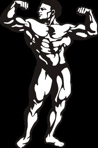 Hombre musculoso.