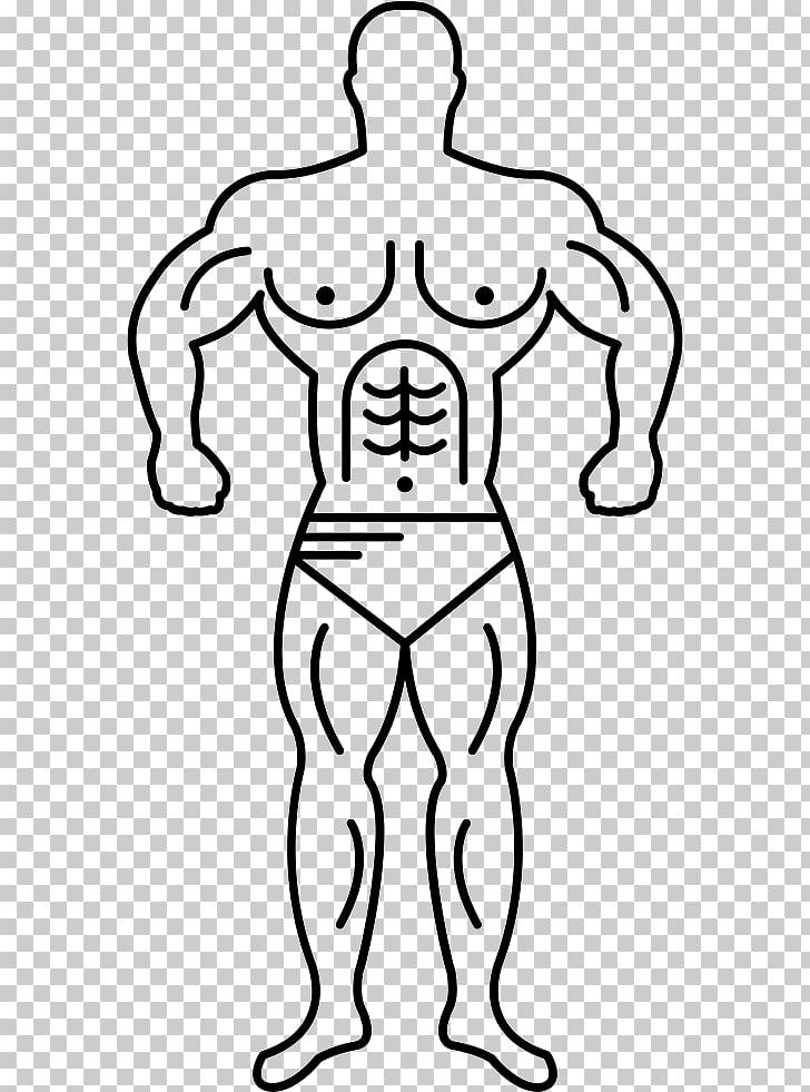 Pierna humana humano brazo del cuerpo humano, hombre.