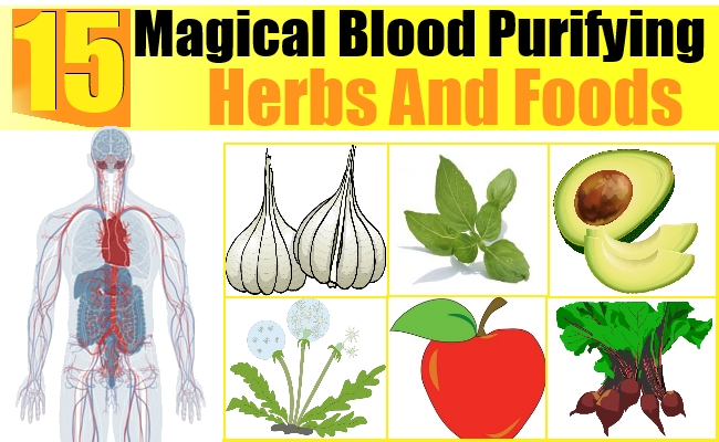 15 Magical Blood Purifying Herbs And Foods.