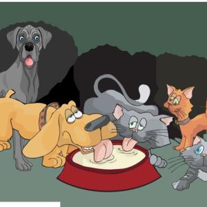 Animal Shelter Clipart.
