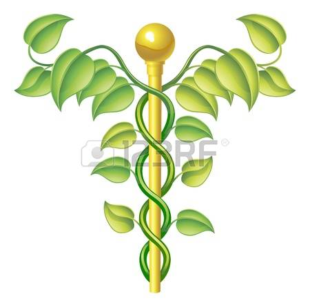 3,335 Homeopathy Stock Illustrations, Cliparts And Royalty Free.