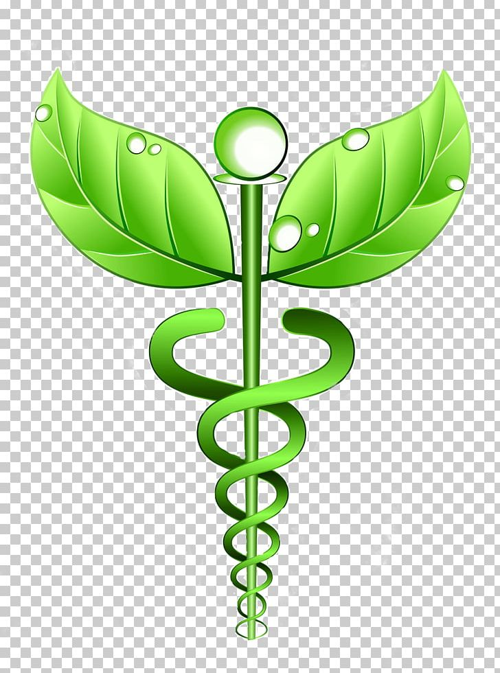 Alternative Health Services Medicine Homeopathy Therapy.