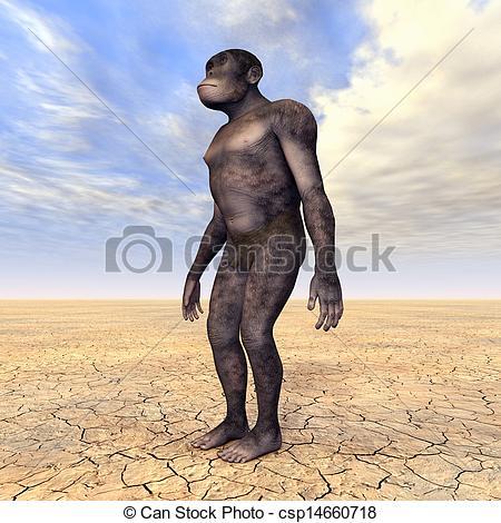 Homo habilis Clipart and Stock Illustrations. 49 Homo habilis.