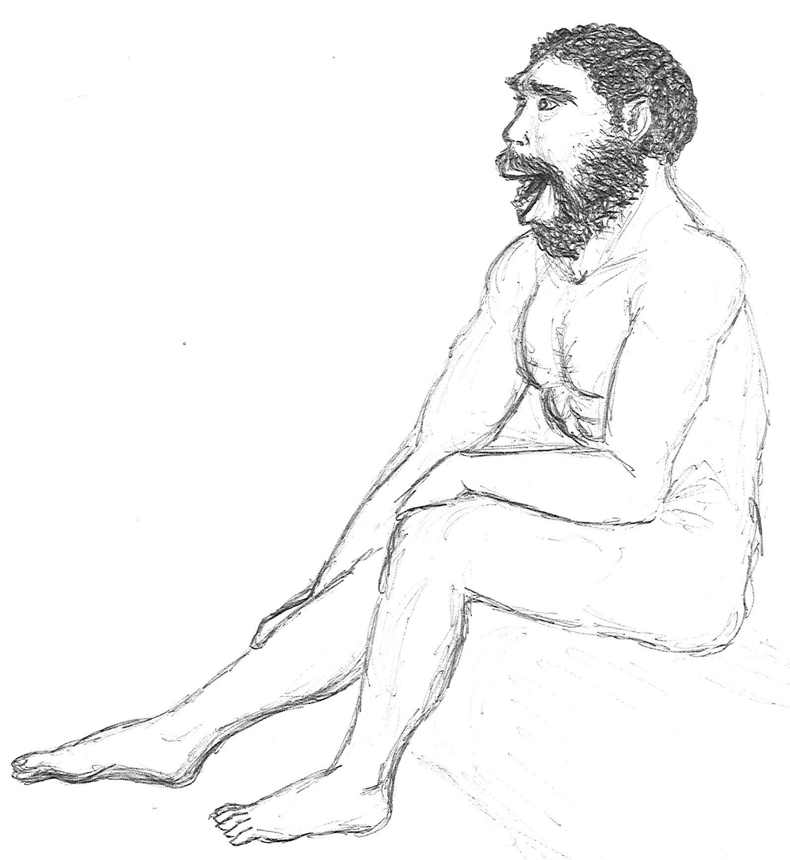 29. Homo erectus.