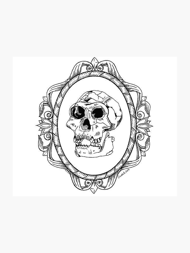 Homo erectus Skull in Ornate Frame.