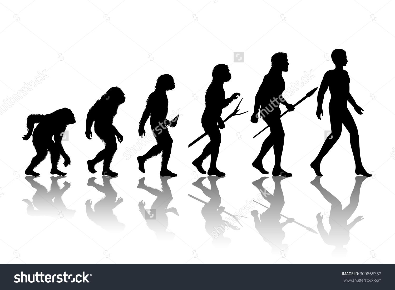 Man Evolution Silhouette Progress Growth Development Stock Vector.