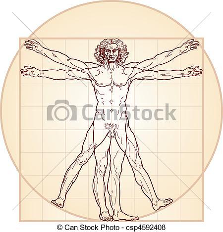 Vettore di vitruvian, (homo, uomo, vitruviano).