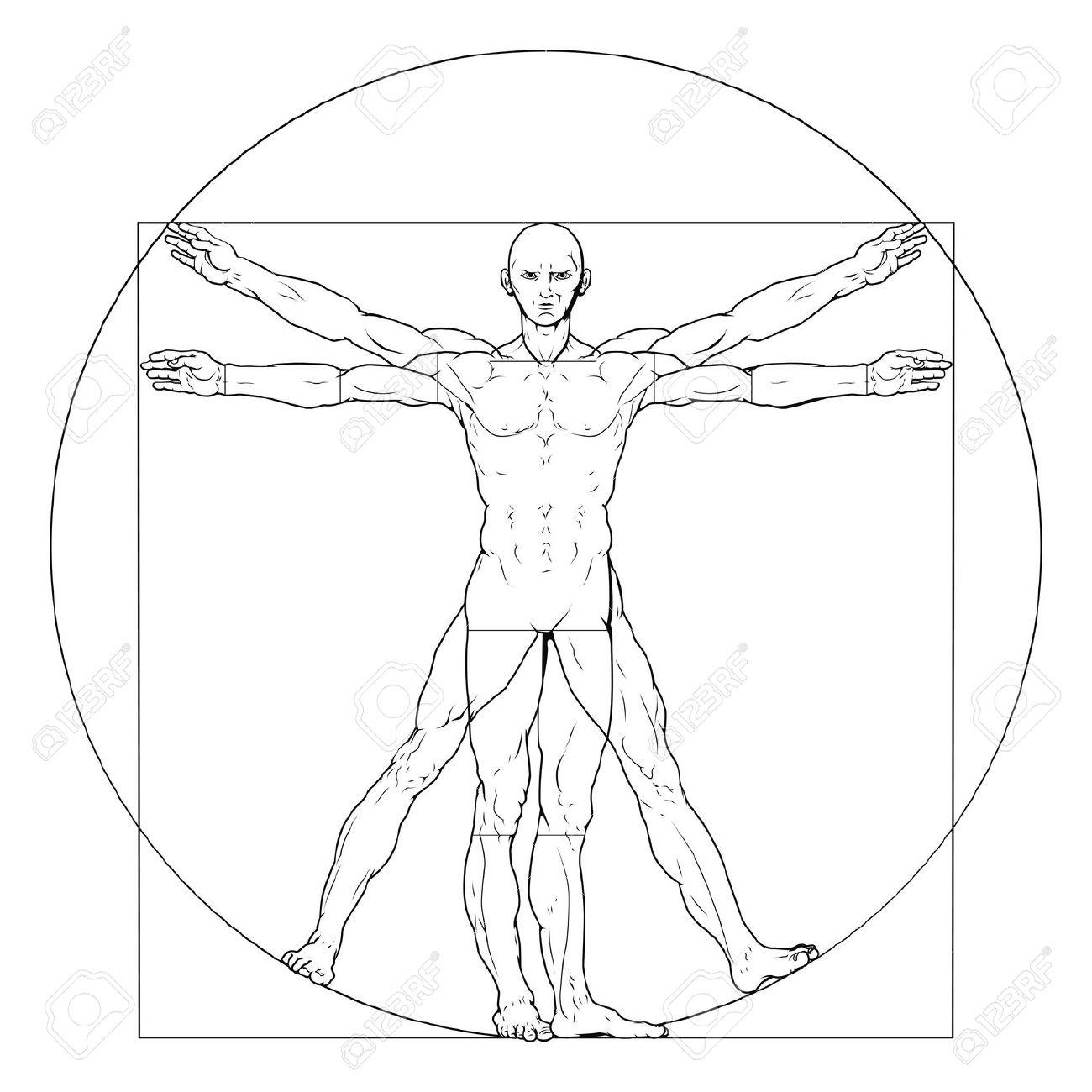 Illustrazione Basato Sul Classico Uomo Vitruviano Di Leonardo Da.