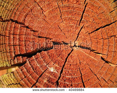 Homocentric Stock Photos, Images, & Pictures.