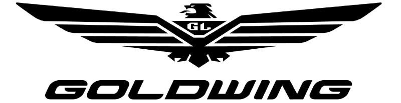Showing post & media for Honda goldwing symbol.