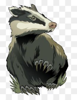 Honey Badger PNG.