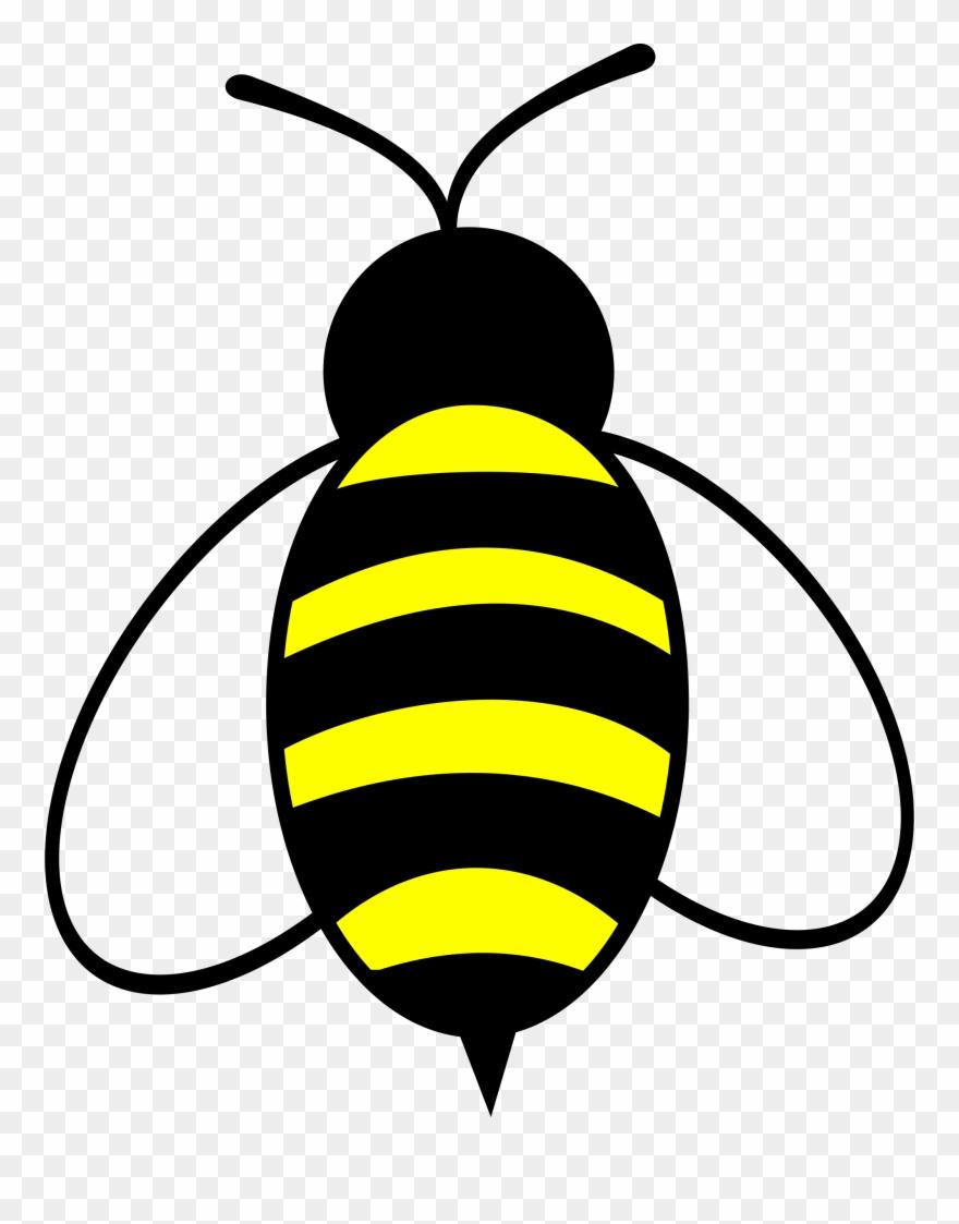 honey bee clip art #3
