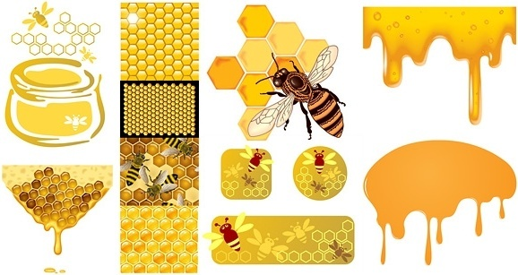 Honey bee free vector download (314 Free vector) for commercial.