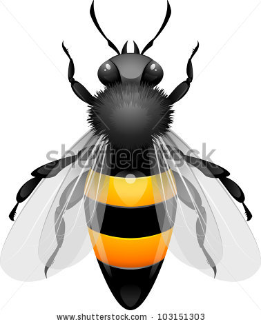 Vector bee sting free vector download (265 Free vector) for.