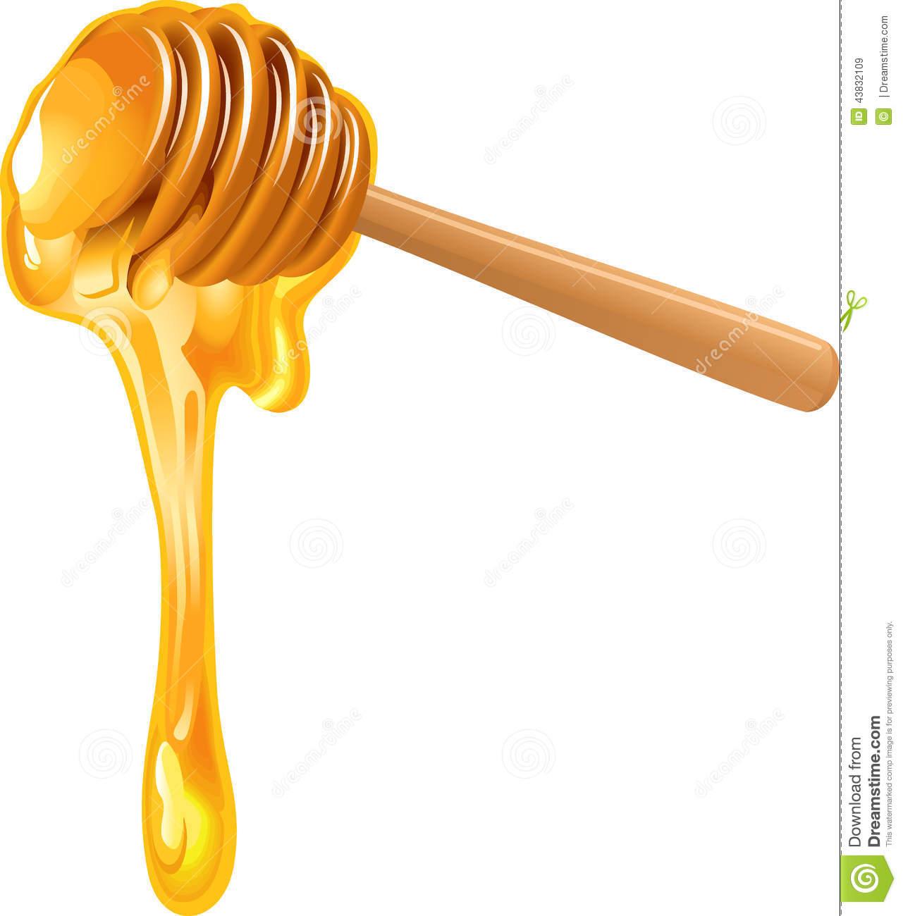 Honey Dipper Stock Illustrations.