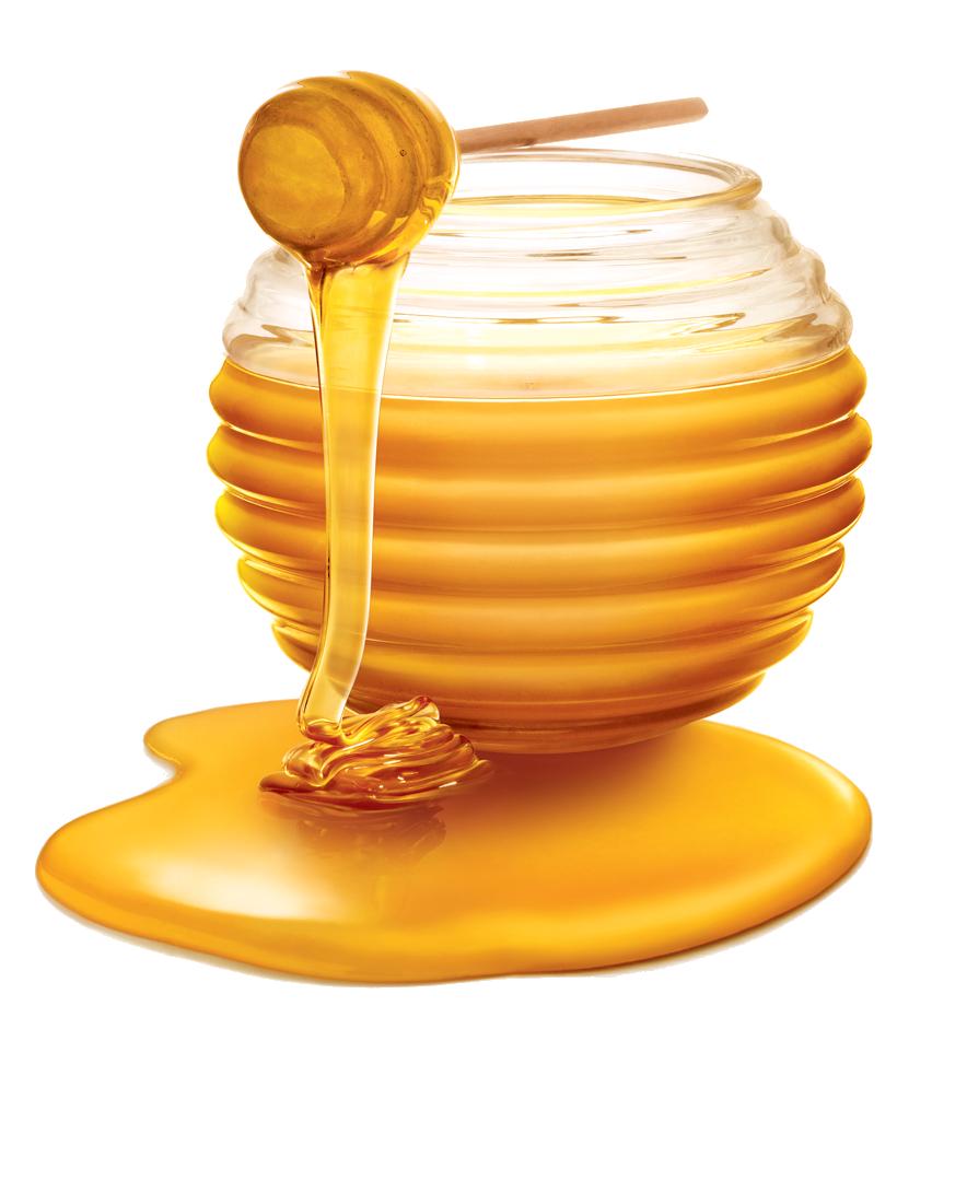 Honey PNG HD Transparent Honey HD.PNG Images..