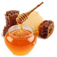 Download Honey Free PNG photo images and clipart.