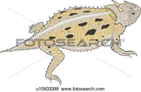 Clip Art of Horny Toad u10503399.