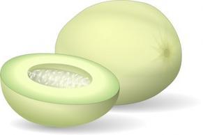 Melon Free Vectors.