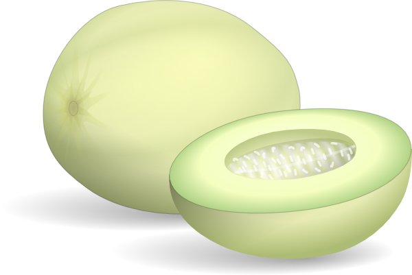 Honeydew Melon clip art Free Vector / 4Vector.