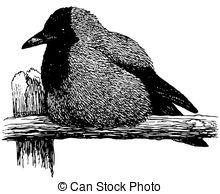 Hooded crow Illustrations and Clipart. 35 Hooded crow royalty free.
