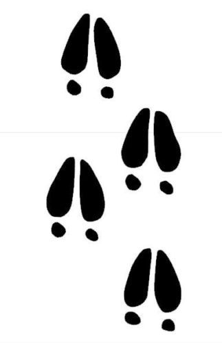 Deer Hoof Prints Vector.