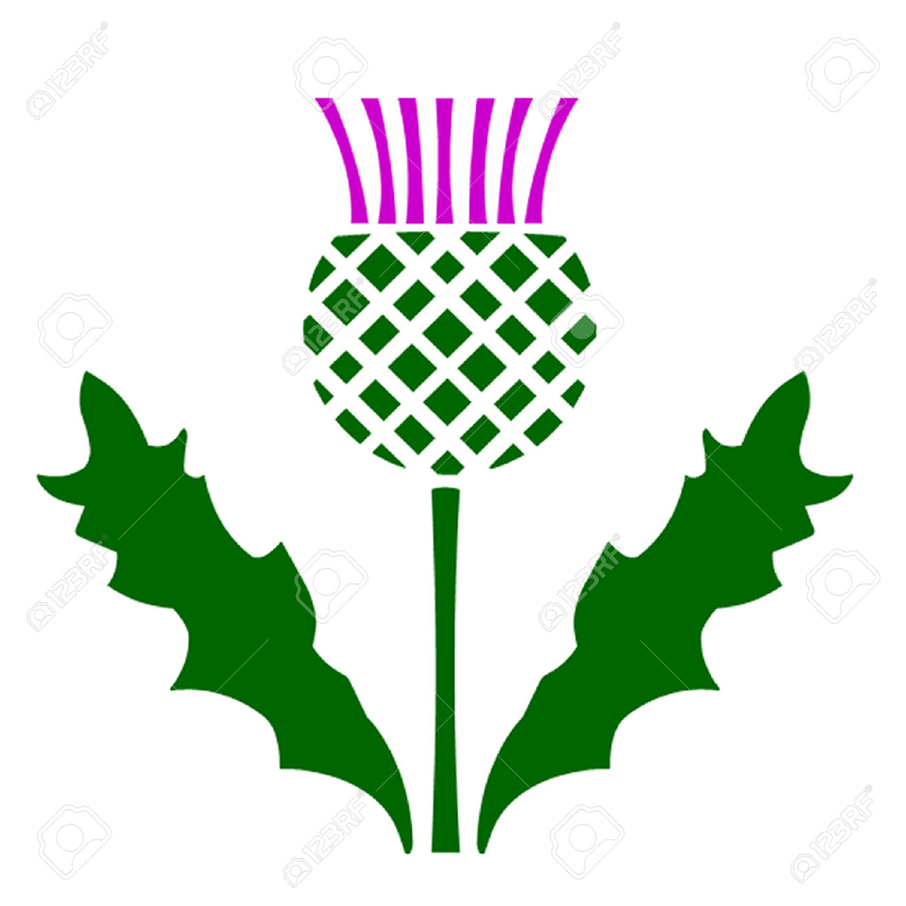 Thistle clipart free.