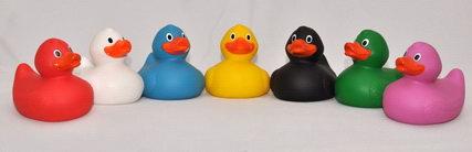 JustDucks Duck Race Ducks & Hook.