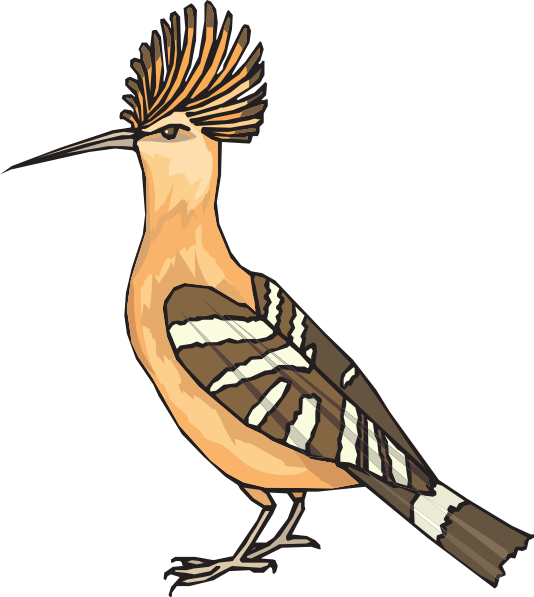 Angry Hoopoe Clip Art at Clker.com.